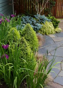 Layers of foliage form, color and texture in this little courtyard garden capture attention year-round while keeping weeds at bay.